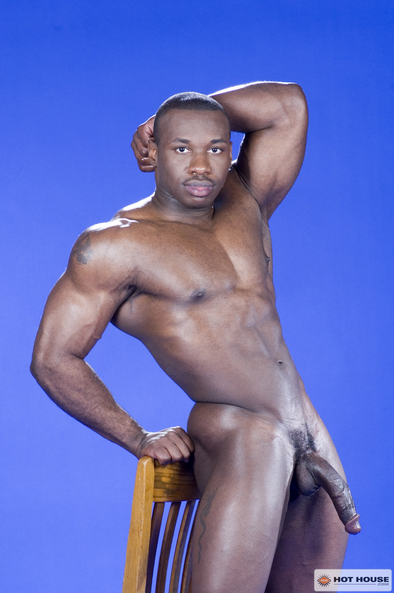gay muscle men Search