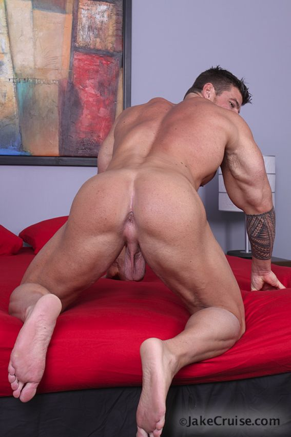 Muscular stud wanks off while mature gay licks his bare
