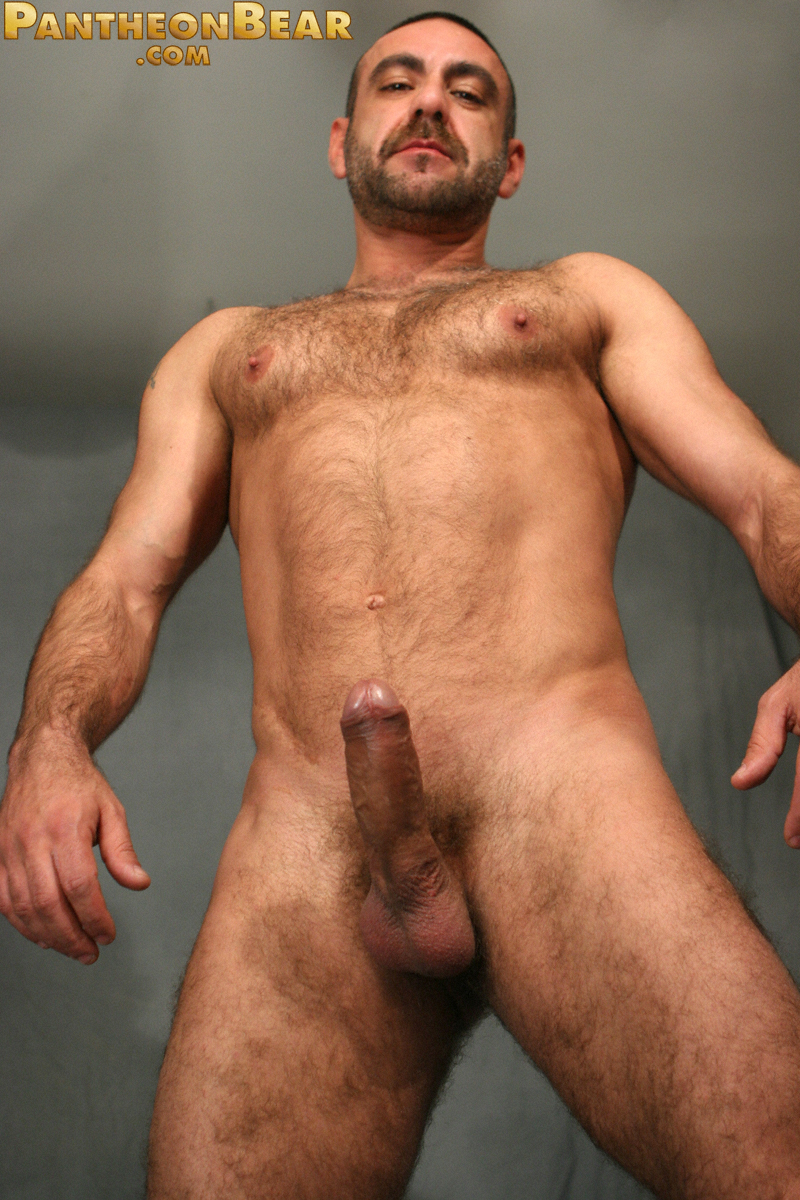 картинки голые волосатые члены мужчин-де2