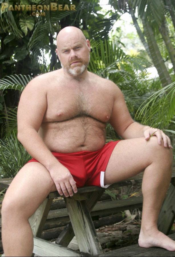 Bear naked inc