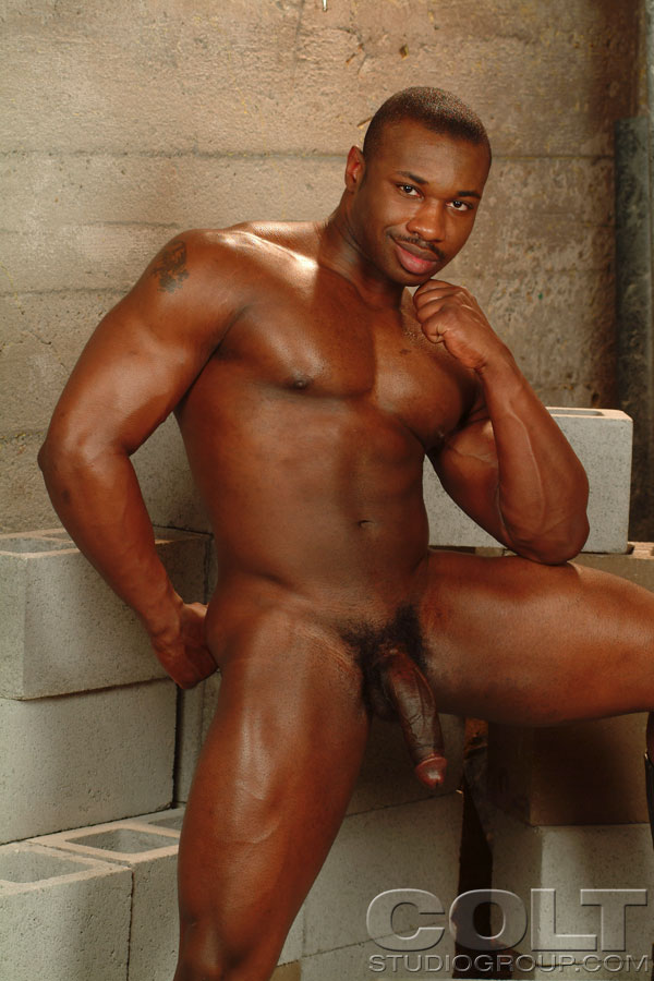 muscular Gay comics black homosexual