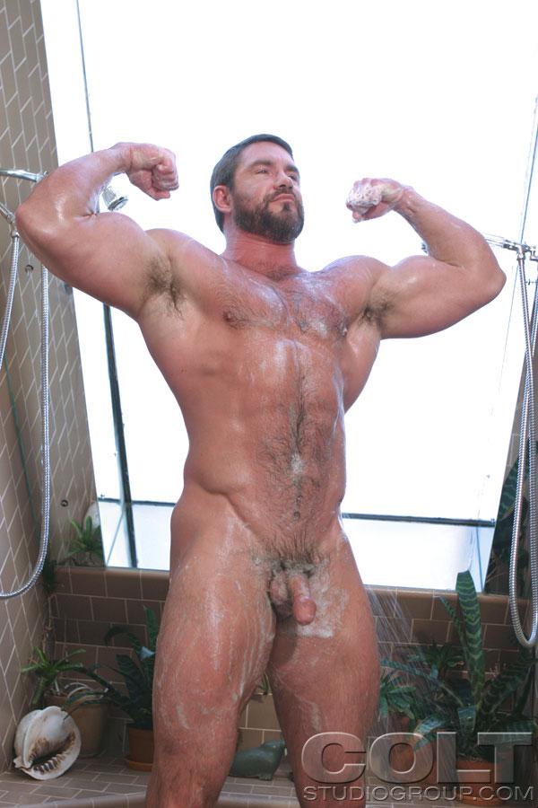 gay bears vid clip