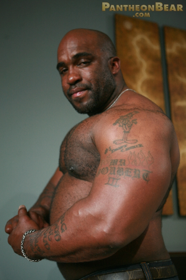 Big gay black bear