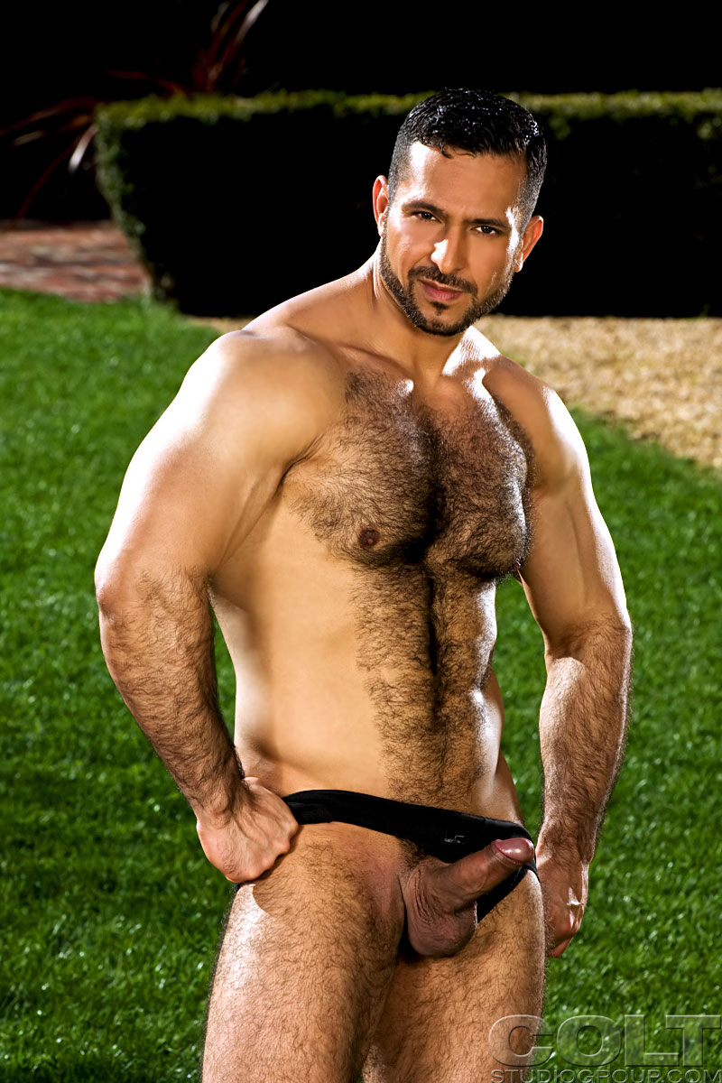 Adam Champ Gay Porn two hairy muscle hunks adam champ and ralph hudson   cloudy